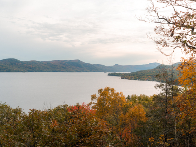 Foliage and view from the lookout